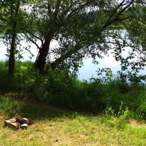 Lazdynėlių namai šalia Neries upės